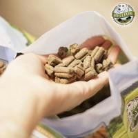 Gesundes Hundefutter für eine artgerechte Ernährung