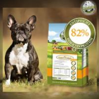 Vier gute Gründe für Insekten im Hundefutter